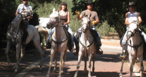 יאיר-קמיר-חנן-קמיר-סוס